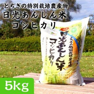 とちぎの特別栽培農産物 日光あんしん米コシヒカリ 5kg_画像