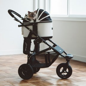 エアバギー ブレーキモデル ドームS PLUS