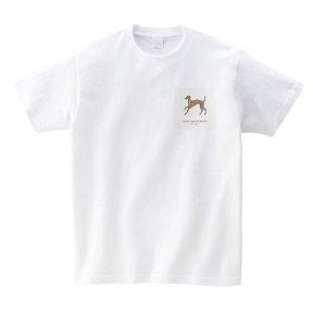 ◇イタリアングレーハウンドフェスティバル 2021 オリジナルTシャツ