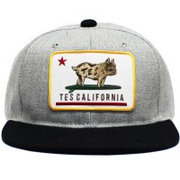 <img class='new_mark_img1' src='https://img.shop-pro.jp/img/new/icons14.gif' style='border:none;display:inline;margin:0px;padding:0px;width:auto;' />【TES】TES CALIFORNIA REPUBUHIC BASEBALL CAP MIX GREY スナップバックキャップ エンドレスサマー
