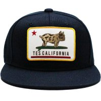 <img class='new_mark_img1' src='https://img.shop-pro.jp/img/new/icons14.gif' style='border:none;display:inline;margin:0px;padding:0px;width:auto;' />【TES】TES CALIFORNIA REPUBUHIC BASEBALL CAP NAVY スナップバックキャップ エンドレスサマー