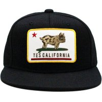 <img class='new_mark_img1' src='https://img.shop-pro.jp/img/new/icons14.gif' style='border:none;display:inline;margin:0px;padding:0px;width:auto;' />【TES】TES CALIFORNIA REPUBUHIC BASEBALL CAP BLACK スナップバックキャップ エンドレスサマー