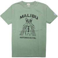 <img class='new_mark_img1' src='https://img.shop-pro.jp/img/new/icons14.gif' style='border:none;display:inline;margin:0px;padding:0px;width:auto;' />【TES/テス】TES MALIBU STAR NOTORIOUS TEE GREEN GRAY Tシャツ THE ENDLESS SUMMER/エンドレスサマー