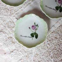 ルドゥーテローズ レリーフ豆皿 ケンティフォリア 薄いグリーンの縁どり