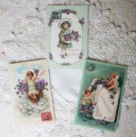 フランス トゥールーズ すみれのポストカード3枚セット