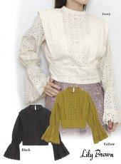 Lily Brown(リリーブラウン)<br>コットン刺繍ブラウス  19秋冬【LWFT194173】シャツ・ブラウス