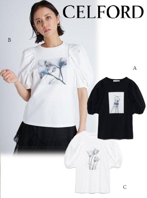 CELFORD (セルフォード)<br>コラボPTボリューム袖Tシャツ  21春夏【CWCT211098】Tシャツ
