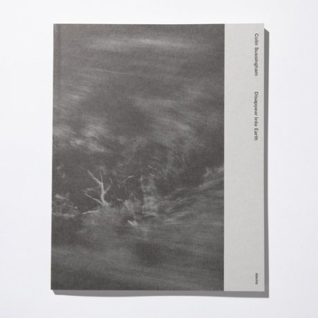 Colin Sussingham 『Disappear Into Earth』
