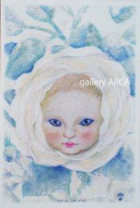 鷹塀三奈|ポストカード|無垢な白い薔薇