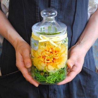ホリフラワー yellow-medium-