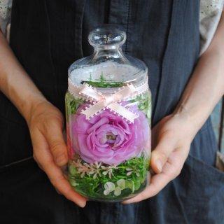 ホリフラワー pink ranun-medium-