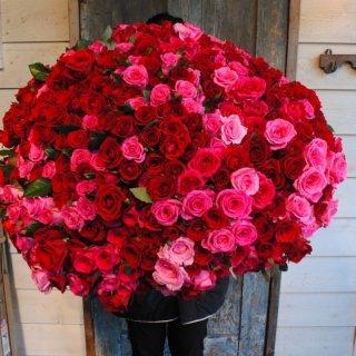 500本のバラの花束