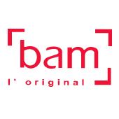 Bam(バム) ViolinCase