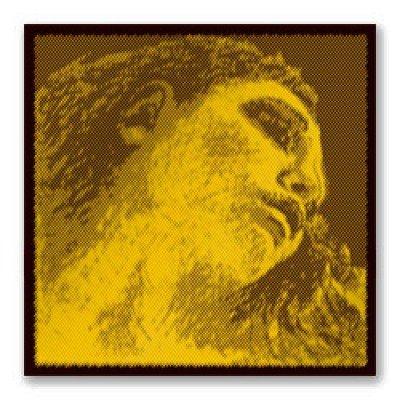 VN Evah Pirazzi Gold 4/4 D線 シルバー