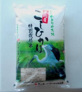 特別栽培米豊岡こしひかり    こうのとり米5Kg