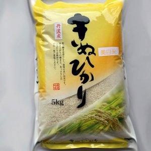 京都丹波産キヌヒカリ5kg美白精米