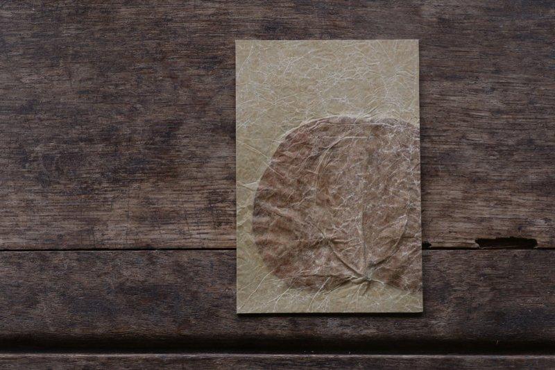楓オリジナル 押葉書-6