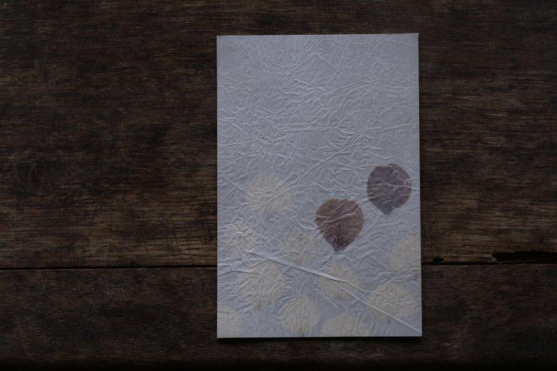 楓オリジナル 押葉書-12