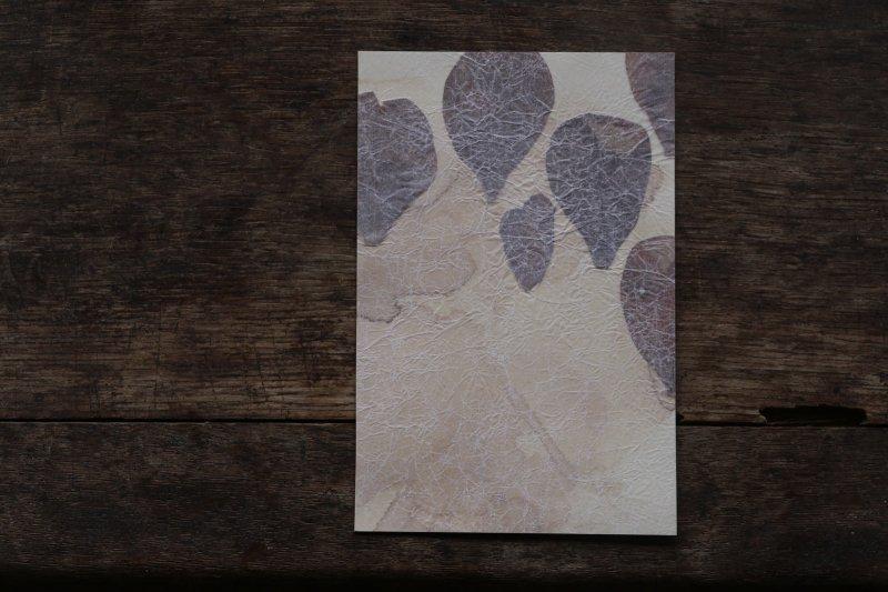楓オリジナル 押葉書-14