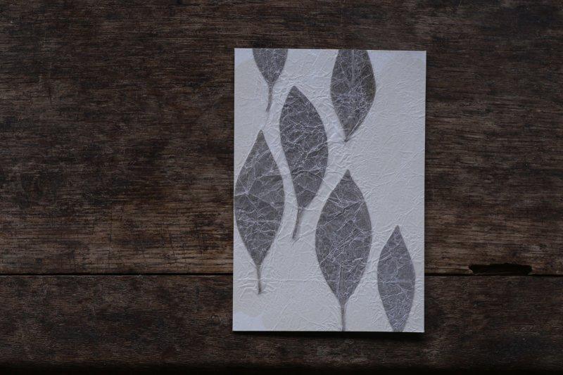 楓オリジナル 押葉書-26
