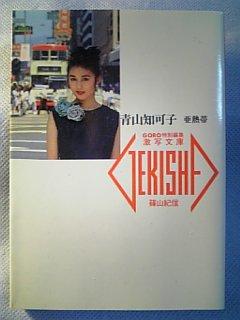 青山知可子の画像 p1_31