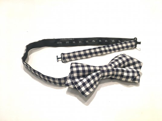 Artist bow tie