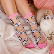 【Coucou Suzette】Cats Transparent Socks