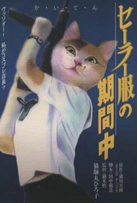 ポストカードNo.360・「セーラー服の期間中」 目羅健嗣 猫イラスト