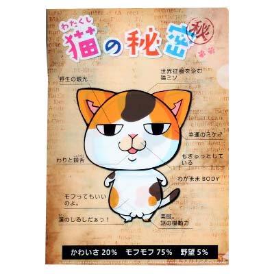 猫クリアファイル A4サイズ 「猫の秘密」 ネコ キャット