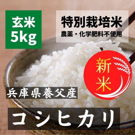 【28年産】農薬不使用の無農薬蛇紋岩米 玄米5kg