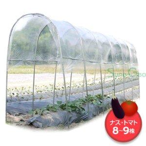 雨よけハウス A-15【組立セット】(1条植え・レギュラー・L=5.4m)