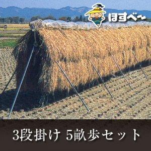 稲掛け支柱(ほすべー)B-1【5畝歩セット】(5a・3段掛け用)