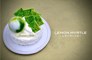 LEMON MYRTLE-レモンマートル-
