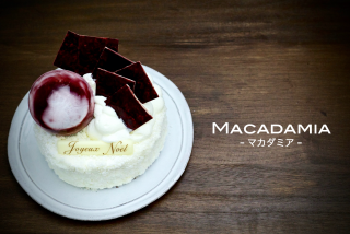 MACADAMIA-マカダミア-