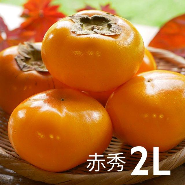 まるはおけさ柿(赤秀2L・32個入)