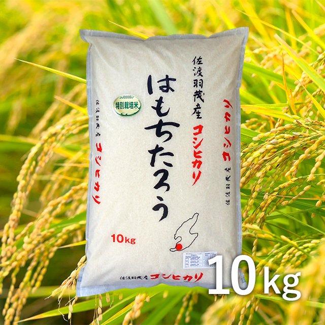 佐渡羽茂産コシヒカリ「はもちたろう」 10kg
