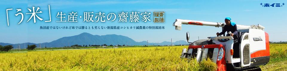 新潟県産特別栽培米コシヒカリ・齋藤家のお米−【う米】−