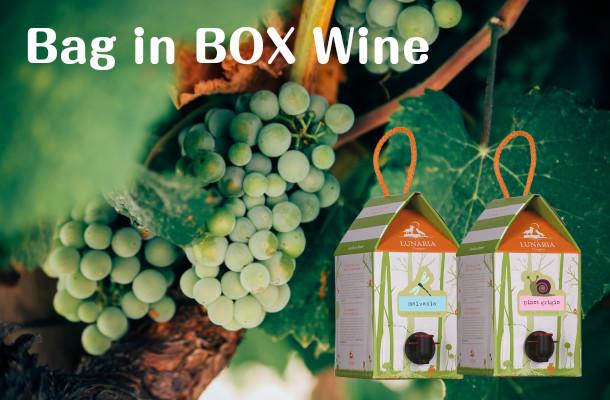 家飲みに最適!高コスパ&高品質でたっぷり楽しめる箱ワイン特集