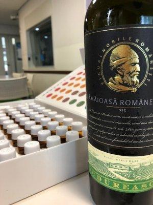 ルーマニアの聖なる香り「ブドゥレアスカ / プレミアム タマイオアサ・ロマネアスカ」