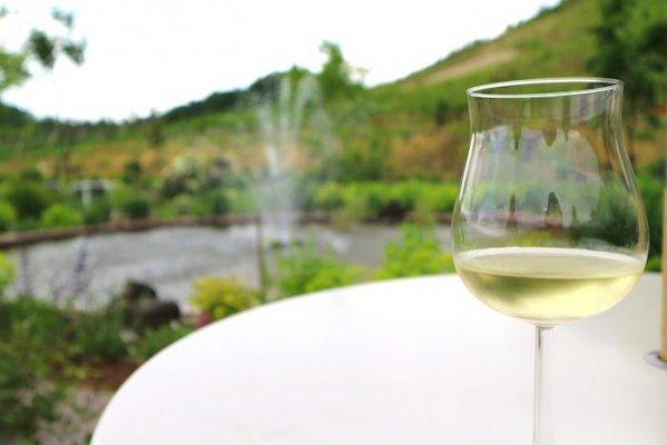 【送料無料】オーガニックワインにハマった社長さんが家飲み用にオーダーしたオーガニック尽くし20本セット(銘柄はプロにお任せ!)