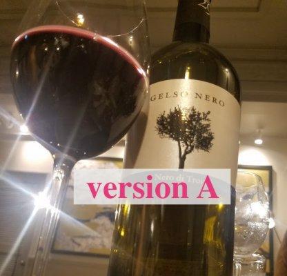 【送料無料】赤ワインしか飲まないご夫婦がオーダーした、いろいろな赤ワインまとめ買い20本セット(銘柄はプロにお任せ!)ヴァージョンA