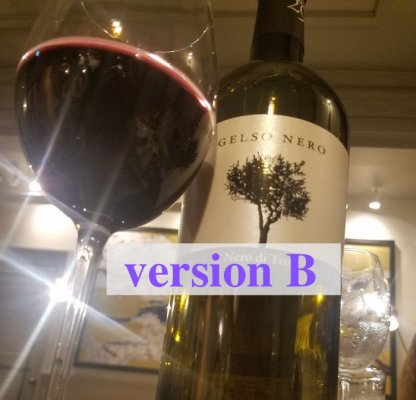 【送料無料】赤ワインしか飲まないご夫婦がオーダーした、いろいろな赤ワインまとめ買い20本セット(銘柄はプロにお任せ!)ヴァージョンB