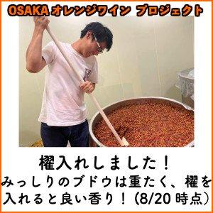【OSAKAオレンジワインプロジェクト】スタンダードサポータープラン(オレンジワイン1本付き)※同梱不可