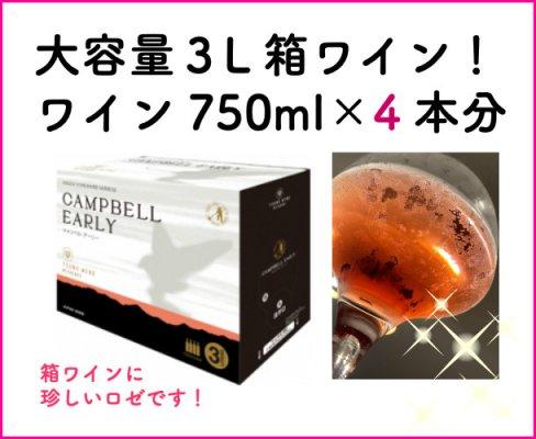 都農ワイン キャンベルアーリー ドライ 3L(通常のワイン4本分/1本あたり945円と超コスパ!)