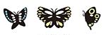 バタフライ・蝶