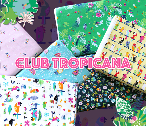 Dashwood Studio Club Tropicana Collection