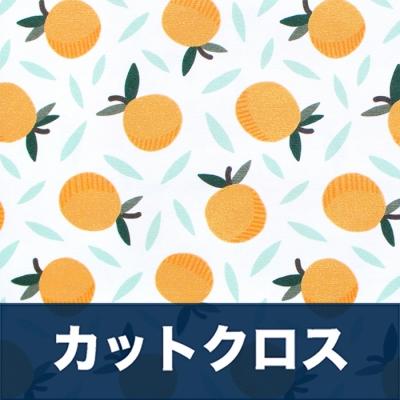 カットクロス Paintbrush Studio Fabrics Fruity 120-19852 White Oranges