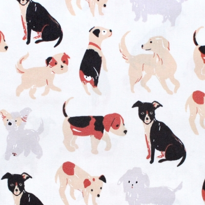 Birch Fabrics Dog Park JR-21 Take a Walk