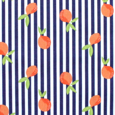 Paintbrush Studio Fabrics Citrus House 120-21875 Citrus Stripe