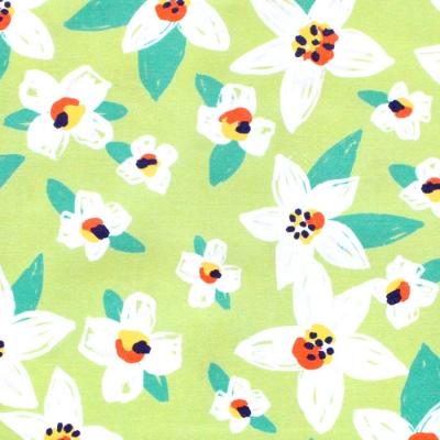 Paintbrush Studio Fabrics Citrus House 120-21876 Blossom